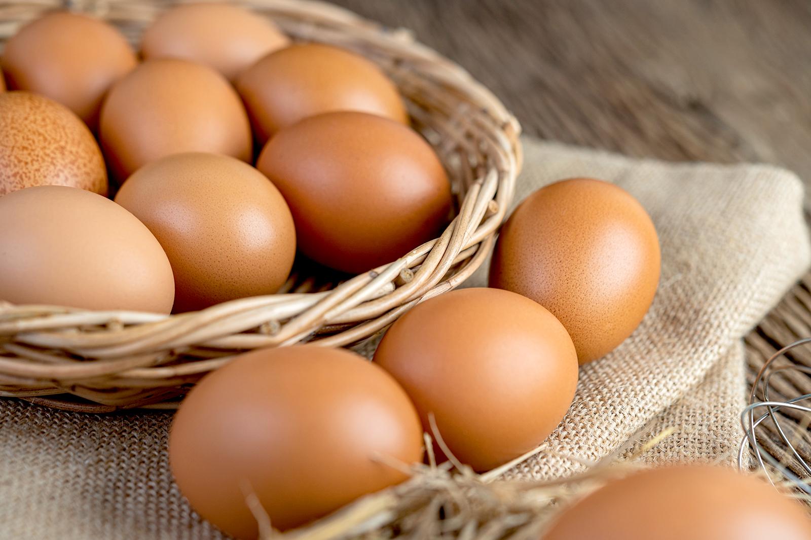 Telur makanan saat trimester pertama