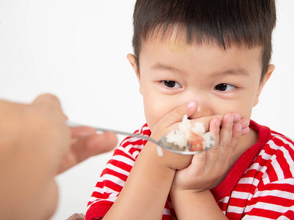 cara menghadapi anak picky eater