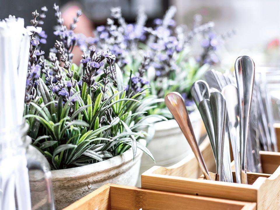 Lavender - Cara mengusir lalat
