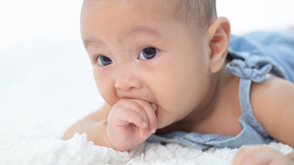 Perkembangan bayi 3 bulan