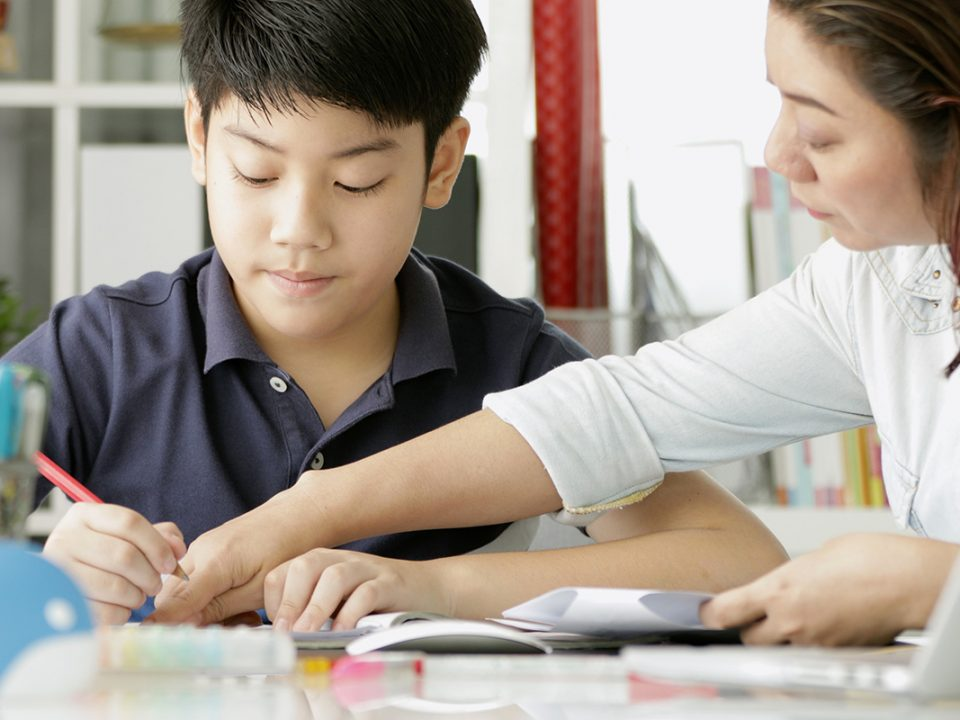 Kelebihan kekurangan homeschooling