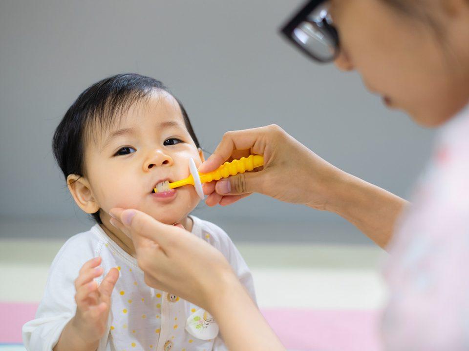 Anak sikat gigi