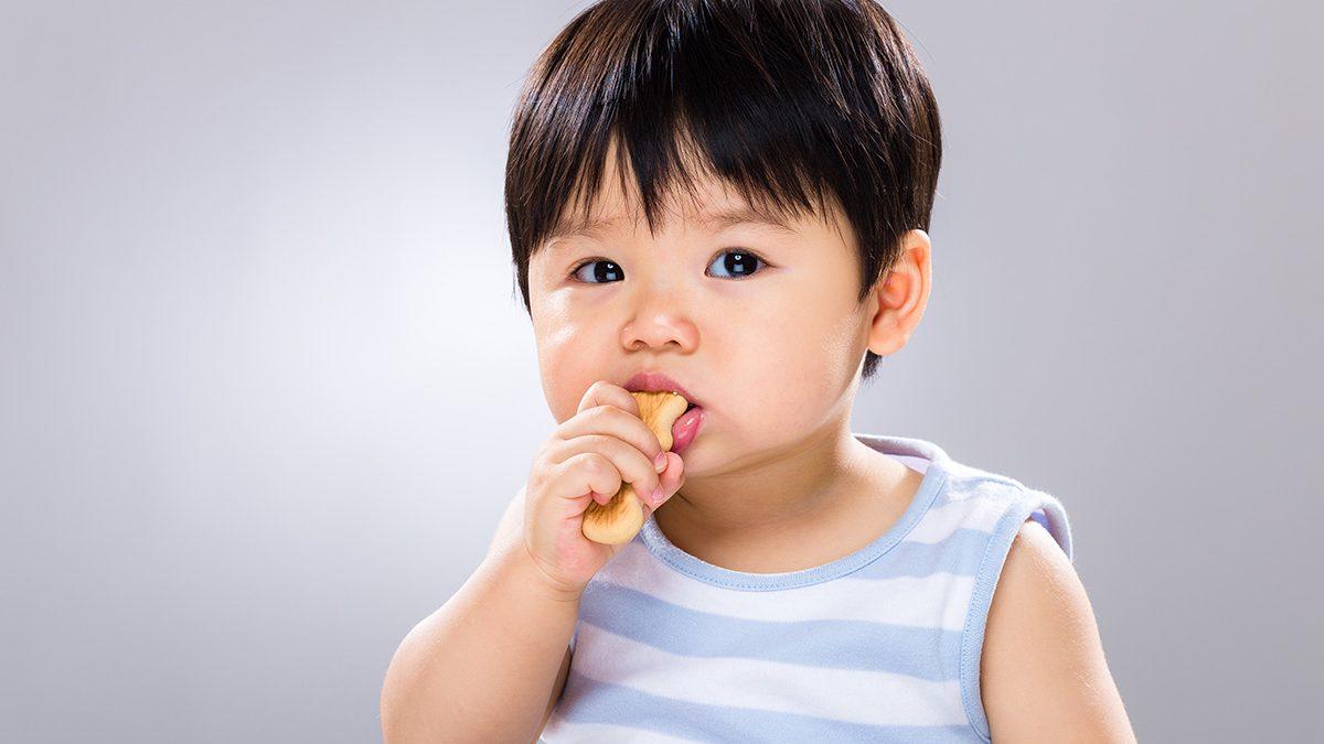 Biskuit bayi