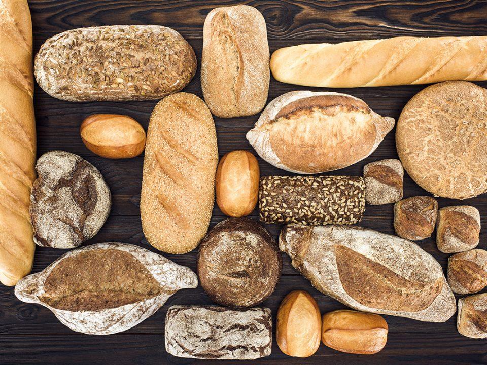 Roti Untuk Diet