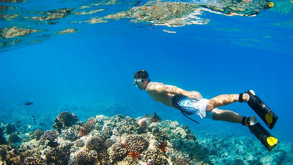 Tempat Snorkeling