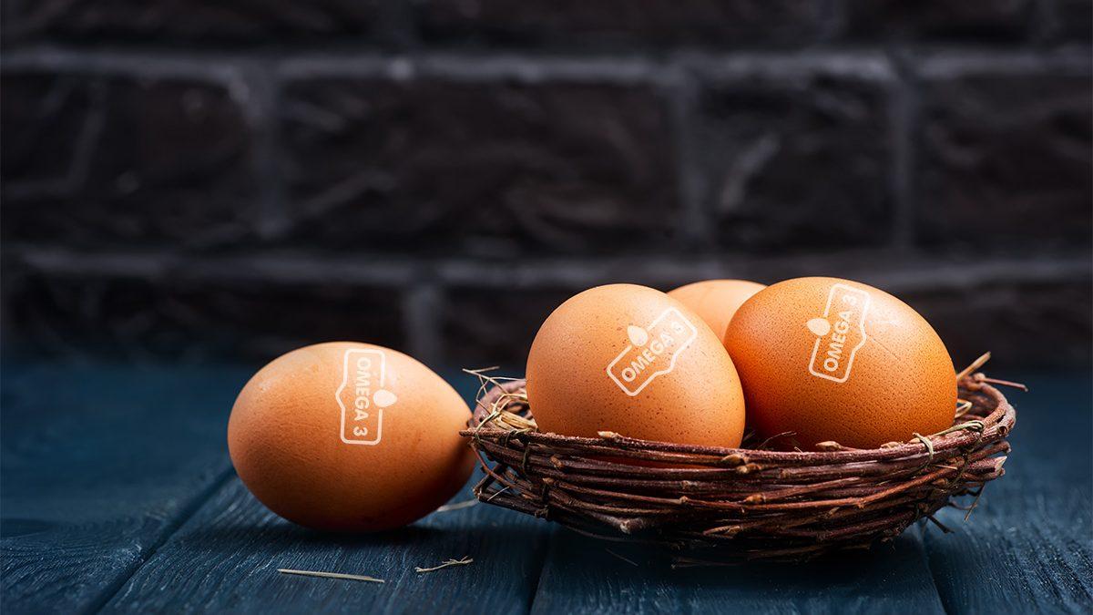 Telur Omega